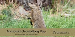 goundhog